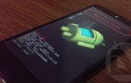 Restore Nexus 5 to Stock