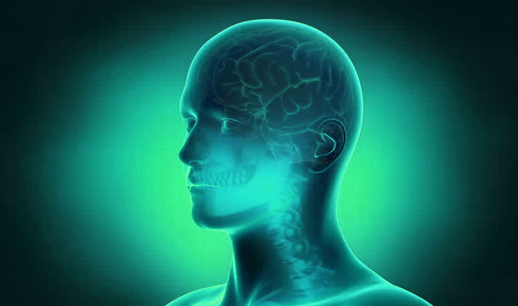 Stimulate Your Brain