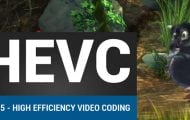 HEVC Video Playback on Android