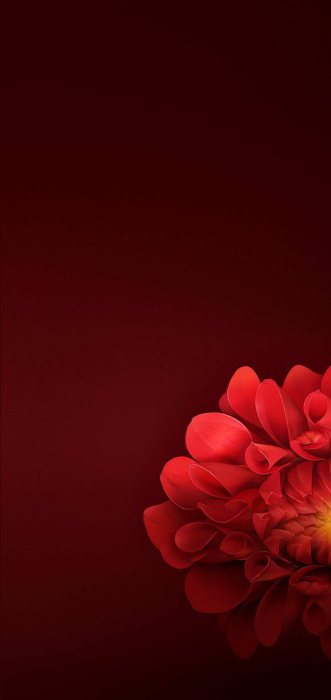 download oppo r15 stock wallpapers (updated) | droidviews