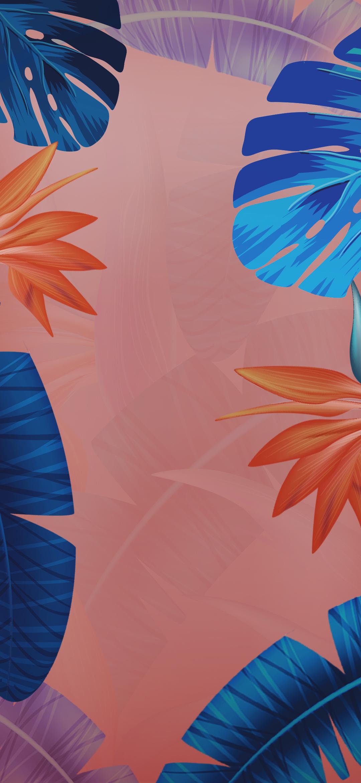 Download Vivo X23 Logo Phone Stock Wallpapers | DroidViews