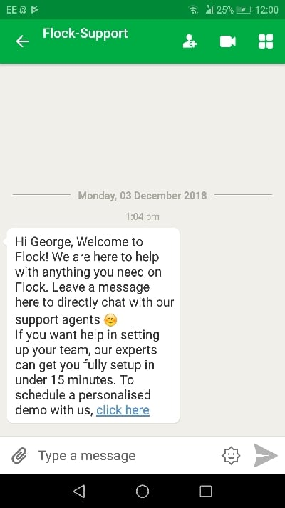 Flock chat app interface