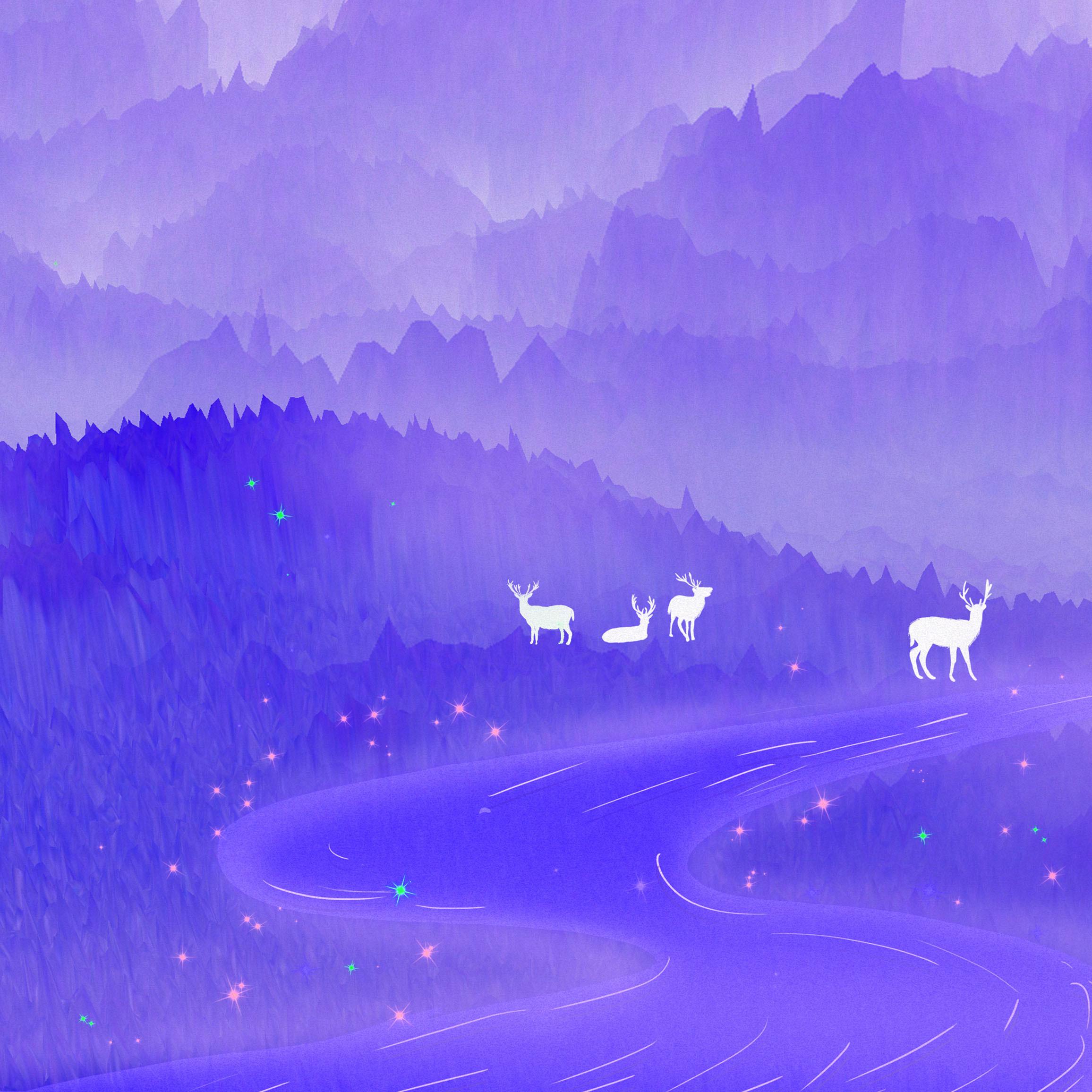 Nova 4E purple wallpaper