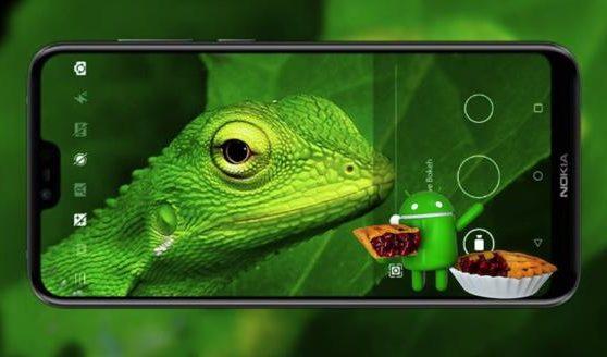 Nokia 6.1 Camera notch
