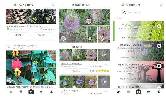 PlantNet Plant Image Recognition App