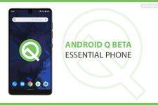 essential phone android q