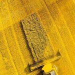 Zenfone 6 yellow fields wallpaper