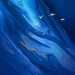 sky wallpaper vivo