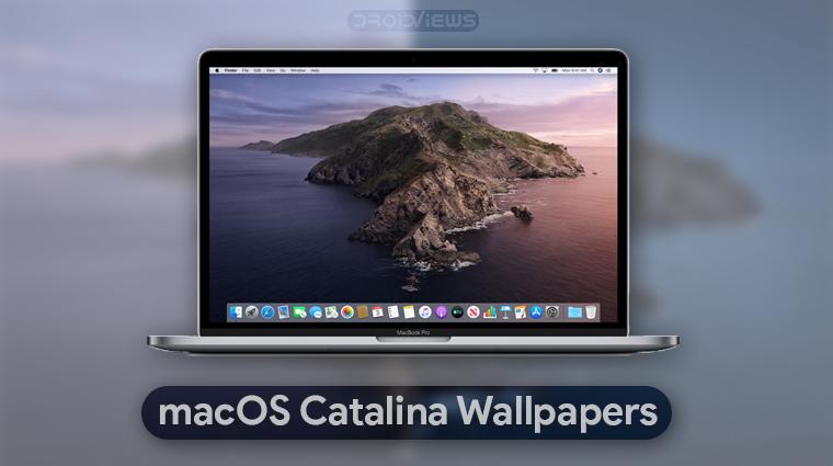 Macos Catalina Wallpapers 4k 6k Video Wallpaper Droidviews