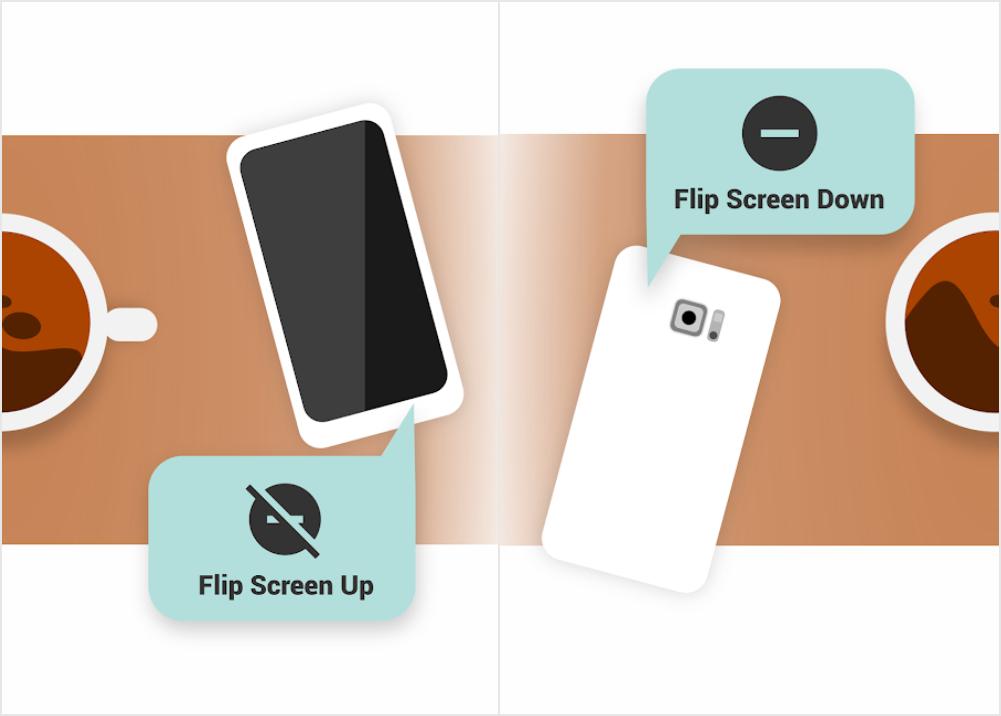 Install Flip DND