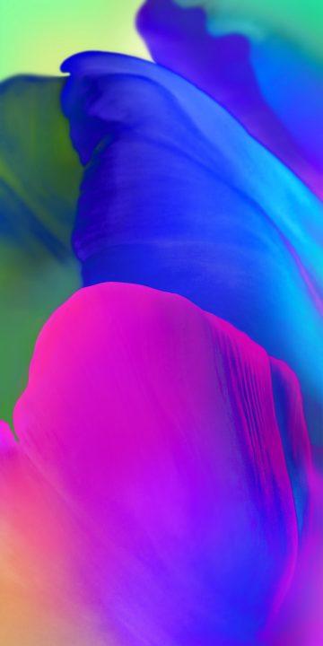 LG V35 colors wallpaper