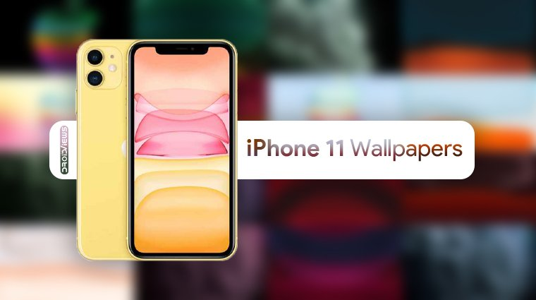 iPhone 11 Wallpapers (4K) | Live