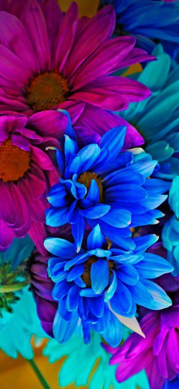 lg g7 fit flora wallpaper