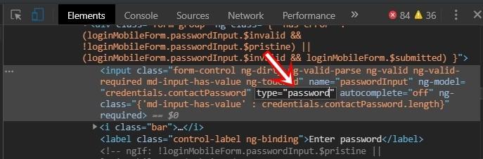 input type password