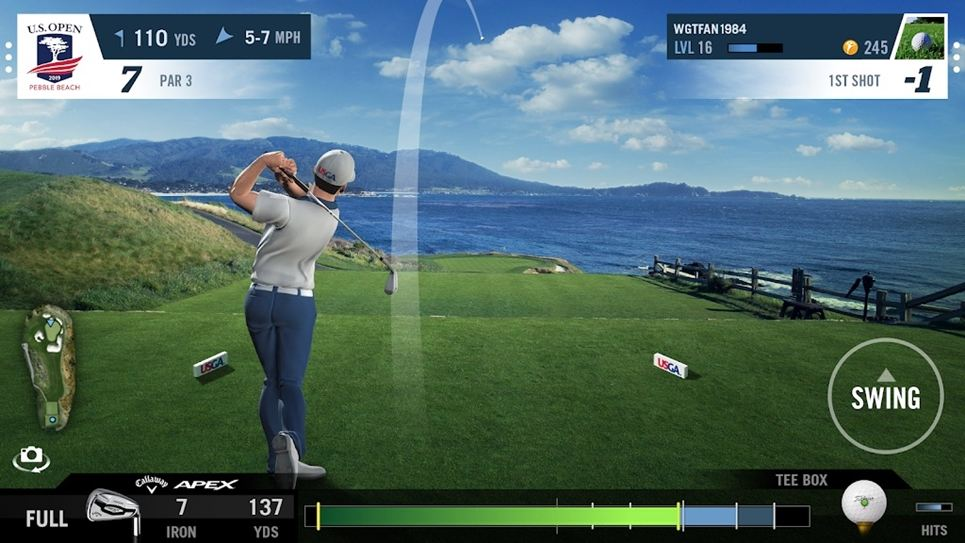 WGT Golf game screenshot