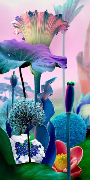 lg stylo 5 flower wallpaper