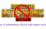 Delete PUBG Mobile Account