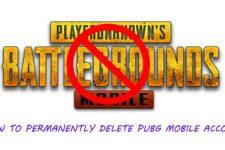 Delete PUBG Mobile Account
